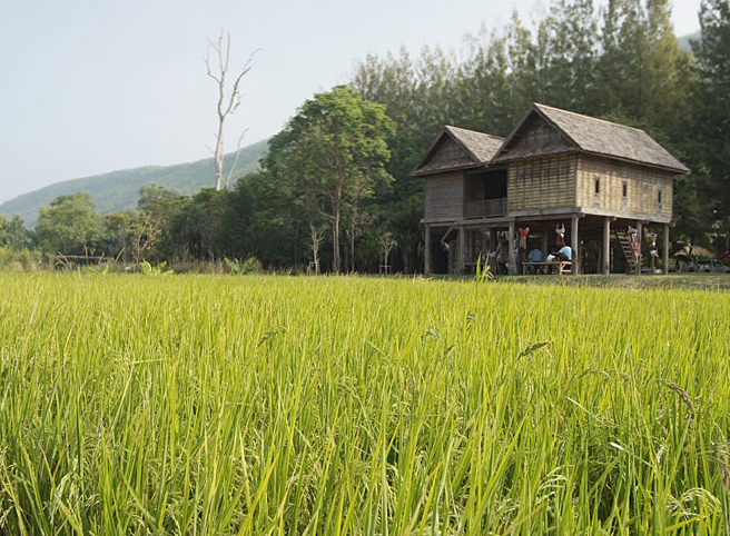 Jim Thompson farm in Isaan, Nakkhon ratchassima Province